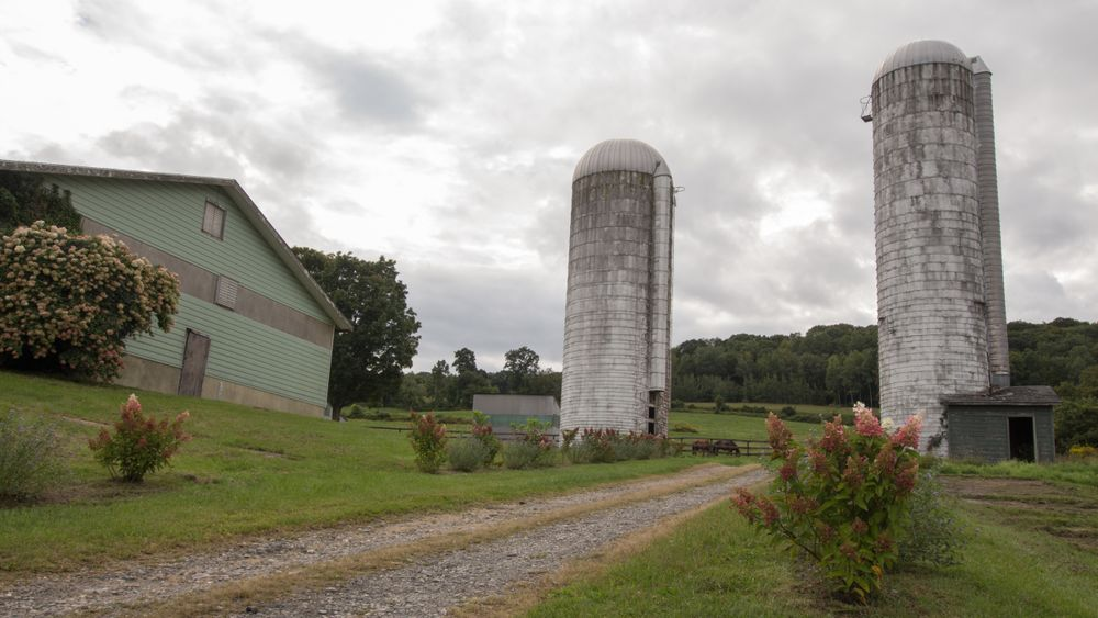 Authentic farm silos offer a rustic vibe and perfect photo backdrop.