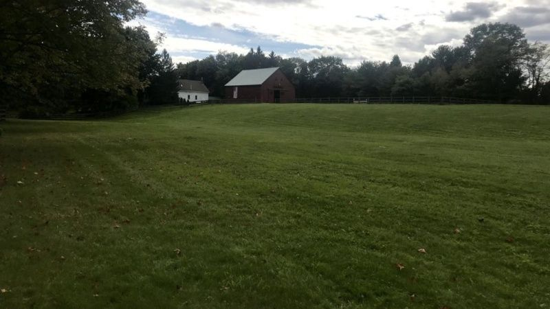Pasture with ideal space for a wedding tent.