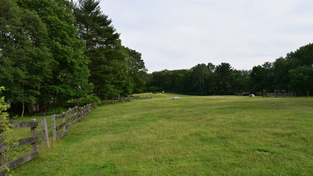 Grazing pasture available for tented reception