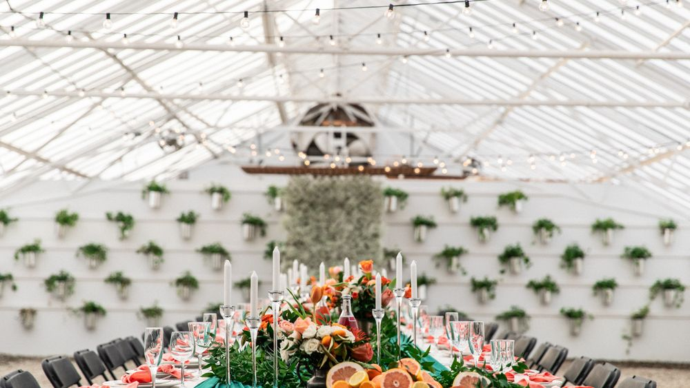 Interior view of greenhouse. (Photo Credit: StopGoLove)