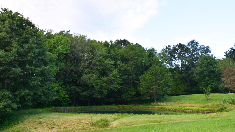 Small pond provides unique ceremony or photo backdrop.