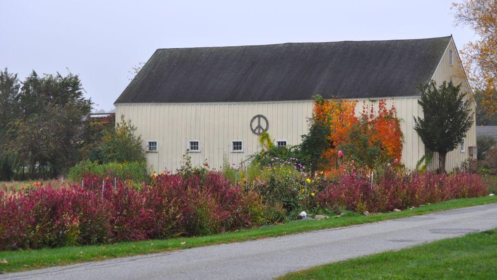 Antique yellow barn