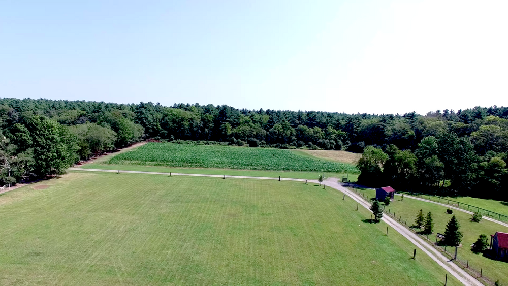 Aerial view of open lawn for ceremony, cocktail hour, and tented reception