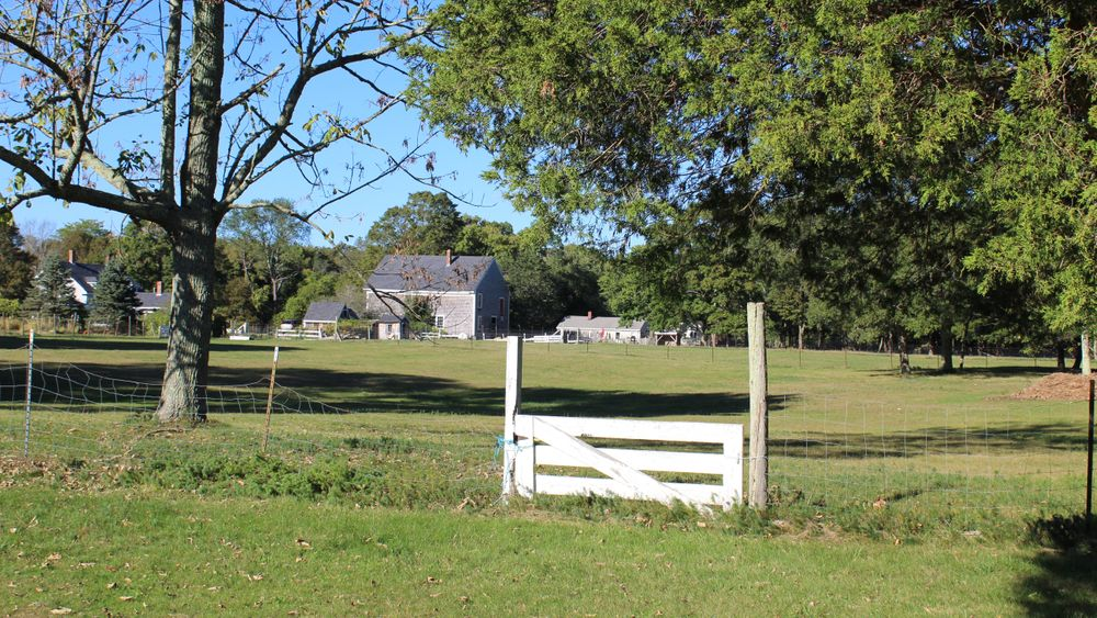 View of lawn and farmhouse in the distance