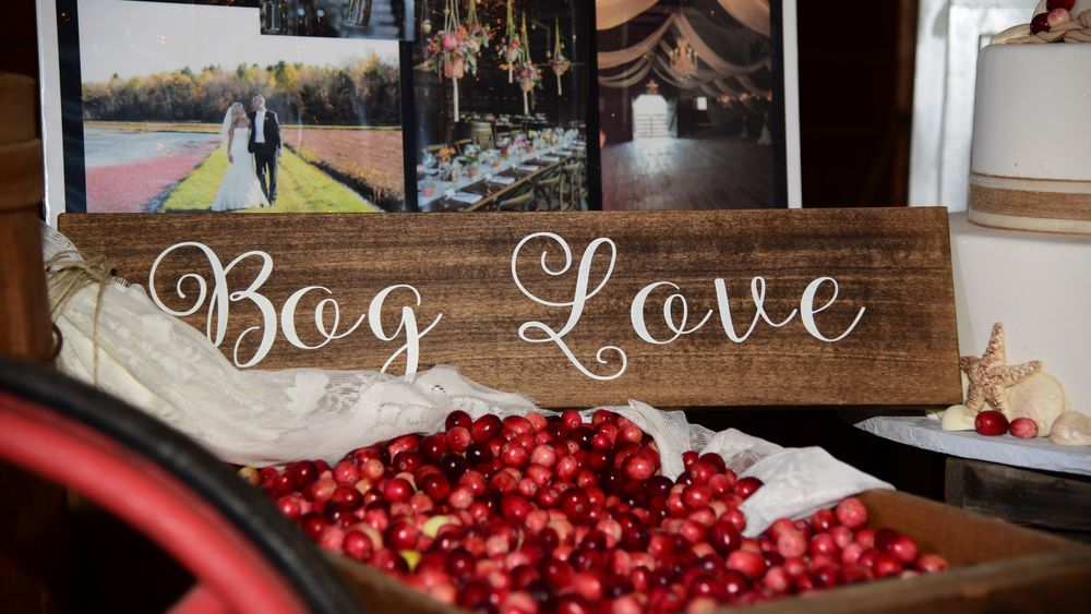A little bog love for a little bit of charm (Kaitlyn Litchfield Photography and Lisa McNeill)
