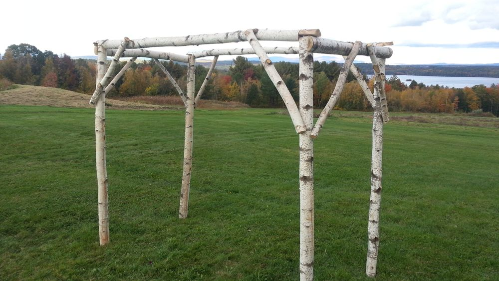 Birch tree arbor used as ceremony arch.