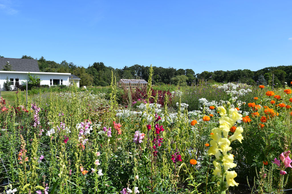 Flower Farm Wedding Venue - Essex Bay Flower Farm