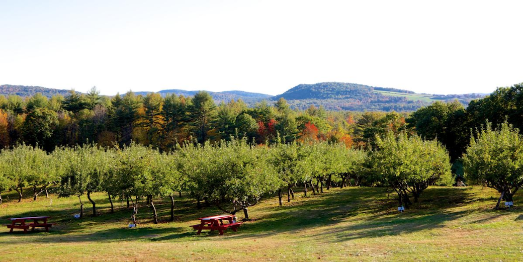 Top Five Maine Nontraditional Wedding Venues #4 - Saco Valley Orchard