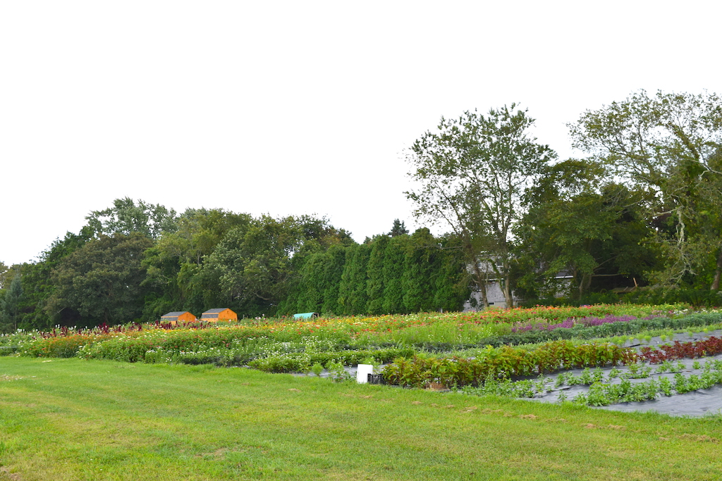 Best Garden Wedding Venues in New England - Newport Hilltop Farm and Orchard