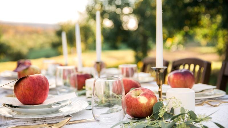 Mayflower Venues: Cortland Hills Orchard