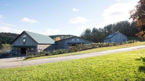 Connemara Field