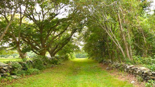 Newport Hilltop Farm and Orchard