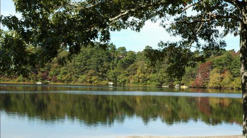 Lakeshore Camp