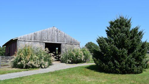 Silver Brook Farm