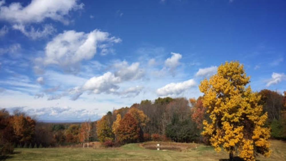 Christmas Tree Farm Massachusetts
