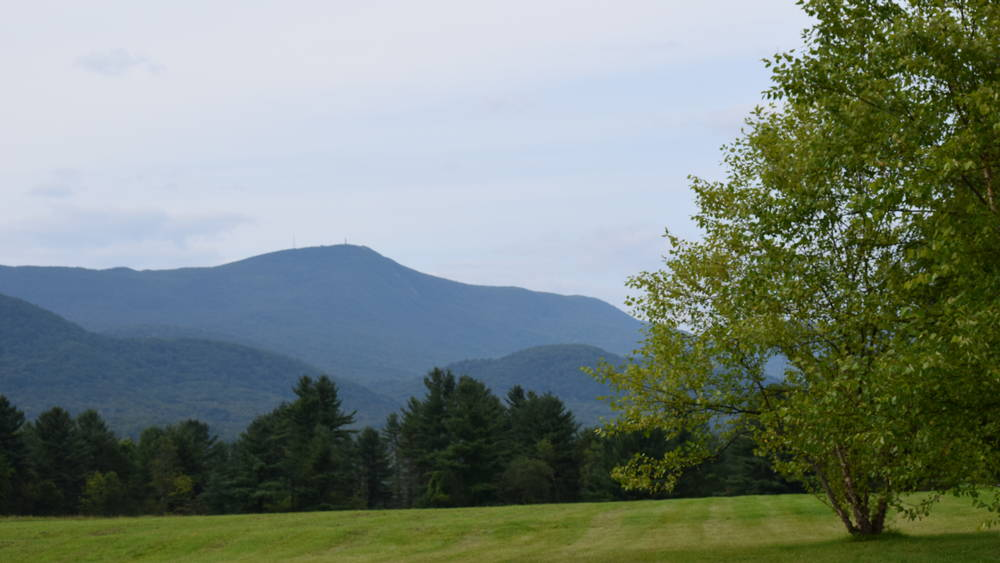 Meadow at Mount Greylock