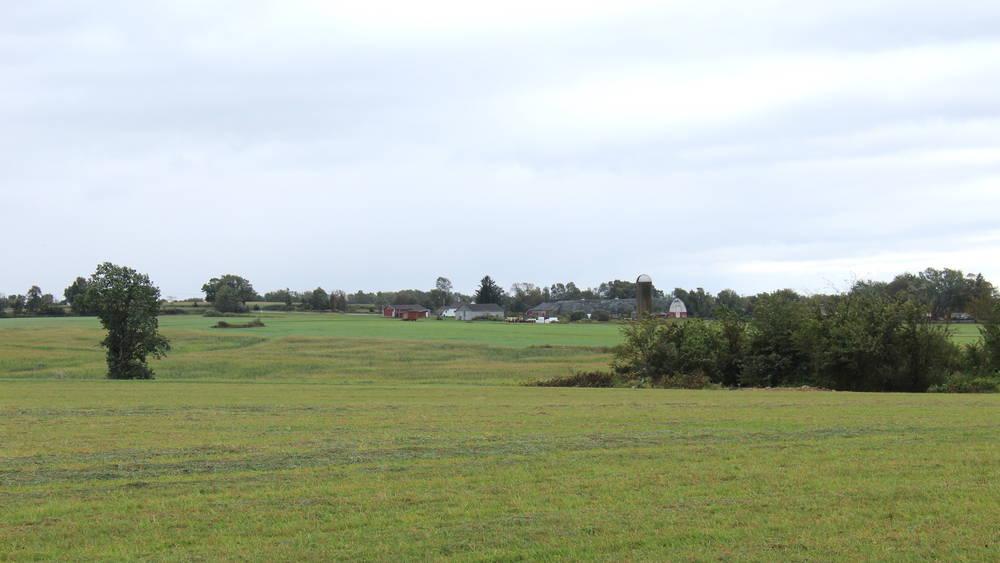 Sterling Fields